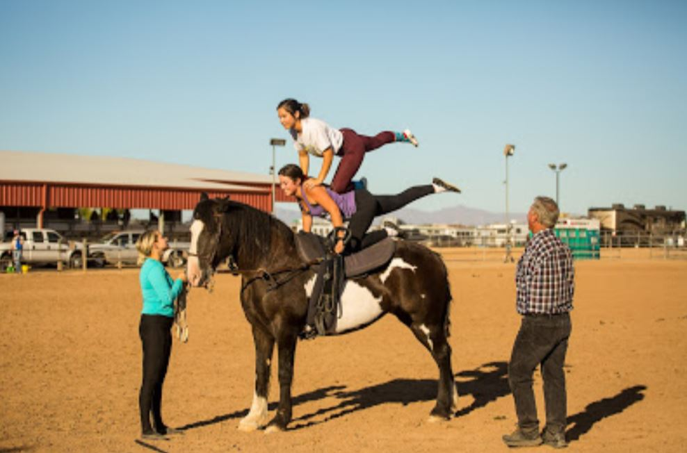2019-10-06 Vaulting Clinic with Rick